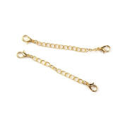 Extender Extension Chain with Lobster Clasps, 20 Pack for Bracelet or Necklace, 7.9cm Long