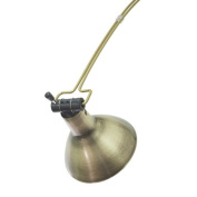 House of Troy AGLED-71 Advent Gemini LED Picture Light, Antique Brass