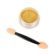 Owill Gold Nail Mirror Powder Glitter Chrome Powder Nail Art Decoration For Casual Life