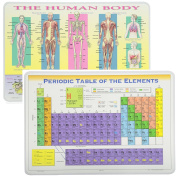 Painless Learning Educational Placemats Sets Human Body and Periodic Table Placemat Non Slip Washable