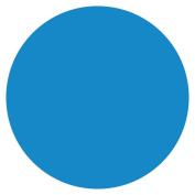 DayMark 112238 MoveMark Blue 1.9cm Blank Day Circle - 2000 / RL