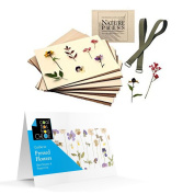 Flower & Leaf Press 7 X 9 Nature Press (For Pressing Leaves & Flowers) with Pressed Flower Guide