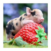 Fineser(TM) DIY Diamond painting Cross Stitch 5D Embroidery Paintings Rhinestone Pasted Strawberry Pig F
