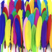 Coceca 500pcs Natural Feathers, Bright Colours, Feathers for DIY Crafts