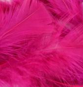 Flat Turkey Feathers 14g-Raspberry Sorbet