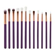 Snowfoller 12Pcs Cosmetic Tool Set Eyebrow Eyeshadow Brush Makeup Brush Sets Kits Tools