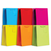Jillson Roberts 6-Count Medium All-Occasion Gift Bags Solid Colour Assortment, Bold and Bright