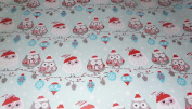 Trim A Home Festive Christmas Wrapping Paper 6.66 YD x 0.8m 4.6sqm 1 Roll Blue Christmas Owls Wrapping Paper