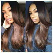 WY Wigs Silky Straight Human Hair Wigs with Baby Hair Lace Front Wigs for Black Women Ombre #1b/#4