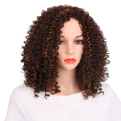 Kanuosi Kinky Curly Synthetic Wig African American Wigs Short Wigs Brown and Blonde Heat Resistant Synthetic Wigs