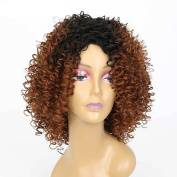 Kanuosi Short Afro Kinky Curly Wig Fashion Heat Resistant Synthetic Wigs Brown for Black Women