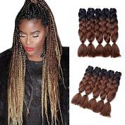 TopWigy Ombre Jumbo Hair Braids Synthetic Hair Extension 5Pcs/Lot 100g/pc 2 Tone Kanekalon Fibre for Twist Braiding Hair
