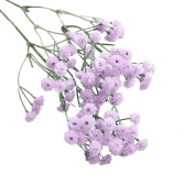 Artificial Silk Flowers,Napoo Artificial Baby's Breath Floral Wedding Party Bouquet Home Decor