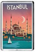 B414 ISTANBUL TURKEY FRIDGE MAGNET TURKEY VINTAGE TRAVEL PHOTO REFRIGERATOR MAGNET
