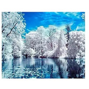 Born Beauty 5D Drilled Diamond Paint Picture DIY Cross Stitch Embroidery By Number Kits Craft Snow Landscape