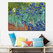 Faraway DIY Oil Painting for Adults Kids Paint By Number Kit Van Gogh Series Iris Digital Oil Painting Decorated Living Room
