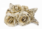 Scrappy Do Large Floral White Rose Musical Paper Embellishment - Bouquet of 6