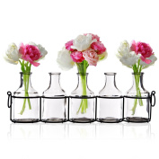 Small Bud Glass Vases in Black Metal Rack Stand, Window-Sill Display Set of 5 Crystal Clear Flower Vase, Decorative Centrepiece for Home or Wedding