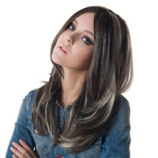 60cm Gradient Brown and Grey Synthetic Straight Hair Women Full Wig with Free Wig Cap