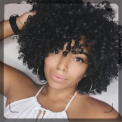 Afro Curly Wig Black Synthetic Wig Heat Resistant Fibre Hair Side Part For Black Women