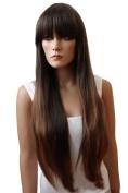 2017 Trendy Asian Ladies Black Neat Bangs Long Straight Hair Wig