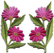 Pink fuscia taffy daisies pair flowers floral bouquet boho embroidered appliques iron-on patches new. 6.4cm x 12cm .