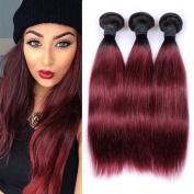 IUEENLY Ombre Burgundy Brazilian Straight Hair 3 Bundles Ombre #1B/99J Brazilian Virgin Hair Silky Straight Human Hair Extensions
