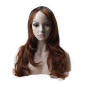 Curly Long Anime Cosplay Synthetic Wig Omber 2 Tone Colour Japanese Kanekalon Heat Resistant Fibre Full Wig with Bangs Layered Wavy 60cm +Stretchable Elastic Wig Net,Natural Black to Light Auburn
