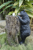 Hi-Line Gift Ltd Bear Climbing Tree Trunk Fountain with Led Light