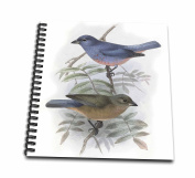 3D Rose db_202341_2 3dRose Vintage Blue and Peach Birds-Memory Book inch, 30cm x 30cm