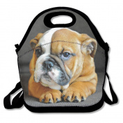 Waterproof Lunch Bag Unique English Bulldog Puppy Dog With Zipper And Adjustable Strap Lunch Tote Box Hand Bag Picnic Boxes Travel Food and Meal Bags Backpack