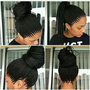 Glueless African American Women Wig with Twist Braids Synthetic Hair Braided Lace Front Wig in Stock