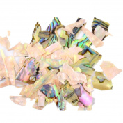 Aribelly Nail Art Shell Piece 3D Charm Decoration Slice DIY Beauty Nail Decals