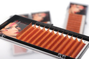 THINKSHOW Blink 3Trays Eyelash Extension Thickness 0.07 C/D Curl Individual Fake Natural Brown