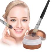 Natural Flawless (Random Colour)BB Concealer Cream Base Face Cream Powder Facial Makeup Tool