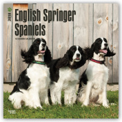 English Springer Spaniels 2018 30cm x 30cm Monthly Square Wall Calendar, Animals Dog Breeds