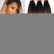 Black Rose Black to Blonde Straight Hair 3 Bundles Ombre Peruvian Human Hair Weave Grade 8A Silky Straight Ombre T1B 27# Two Tone Hair Extensions
