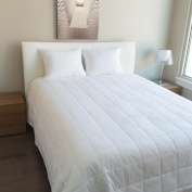 Luxury Cotton - All Season Down Alternative Blanket White Plain , In 300 Tc Egyptian Cotton Available In Queen / Full /King / Twin Sizes (Queen
