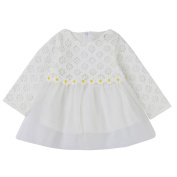 Dirance Newborn & Toddler Baby Girls Long Sleeve Lace Gauze Splice Princess Dress with Back Zipper Children Outfit