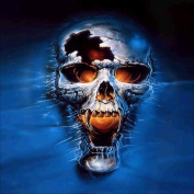 Fineser(TM) 5D Embroidery Paintings Rhinestone Pasted DIY Diamond painting Cross Stitch Skull D