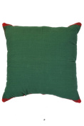 Deep Green Red Border 46cm Square Decorative Accent Pillow Cushion with Fill