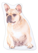 Dog Themed Decorative Accent Pillow, French Bulldog, Approx 36cm x 20cm