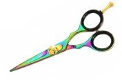 Titanium Rainbow Hair Scissors, Hairdressing Barber Salon Scissors 14cm