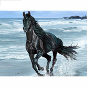 5D DIY Diamond Painting,NACOLA Rhinestone Pictures Of Crystals Embroidery Kits Arts Crafts & Sewing Cross Stitch-Horse