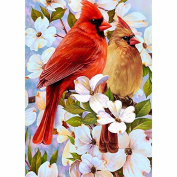 5D DIY Diamond Painting,NACOLA Rhinestone Pictures Of Crystals Embroidery Kits Arts Crafts & Sewing Cross Stitch-Bird