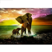 5D DIY Diamond Painting,NACOLA Rhinestone Pictures Of Crystals Embroidery Kits Arts Crafts & Sewing Cross Stitch-Elephants