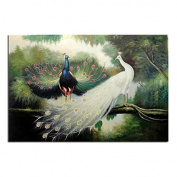 5D DIY Diamond Painting,NACOLA Rhinestone Pictures Of Crystals Embroidery Kits Arts Crafts & Sewing Cross Stitch-Peacock