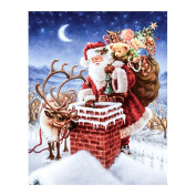 "FKUO 5D DIY Diamond Painting "" Santa's gift surprises "" Embroidery 2.8mm Round Diamond embroidery Fashion home decor"