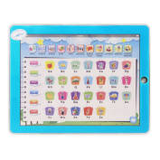 11-in-1 Multifunction Touch Screen Imitative iPad Toys Kids Preschool Electronic Learning Machine Toy Tablet Computer Study English ABC Digital Fruit Animal Learning Toys for Baby Child .