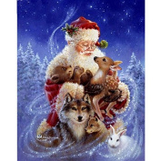 5D DIY Diamond Painting,NACOLA Rhinestone Pictures Of Crystals Embroidery Kits Arts Crafts & Sewing Cross Stitch-Santa Claus